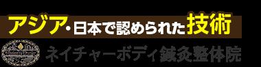 青葉台駅6分「ネイチャーボディ鍼灸整体院」 ロゴ